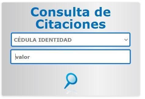 Consulta de puntos de licencia